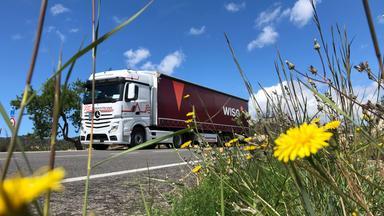 Wiso - Die Sendung Für Service Und Wirtschaft Im Zdf - Mit Dem Wiso-truck Und 500 Ps Durch Europa
