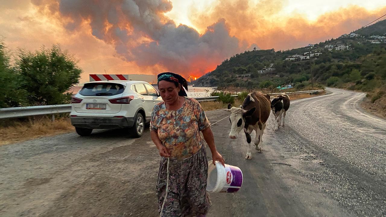 Waldbrände und Hitze : So ist die Lage in Südeuropa