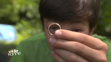 Ehering nach 33 Jahren wiedergefunden
