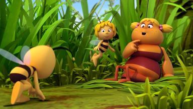Die Biene Maja: Abenteuer Auf Der Klatschmohnwiese - Die Biene Maja: Die Verwirrte Irma