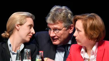 Die drei AfD Spitzenpolitiker Meuthen, Weidel und von Storch auf dem Parteitag