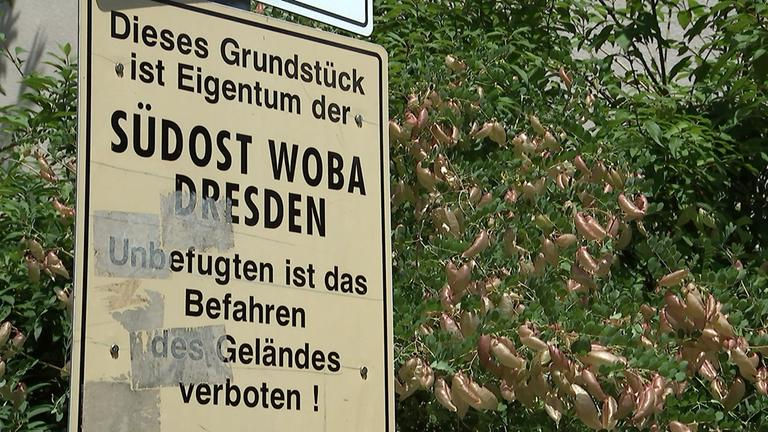 Wohnblock in Dresden