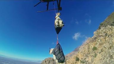 Zdfinfo - Wunder Der Wissenschaft: Fliegende Ziegen Und Giftige Vögel