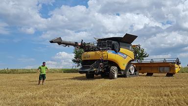 Zdfzoom - Zdfzoom: Der Wahnsinn Mit Dem Weizen